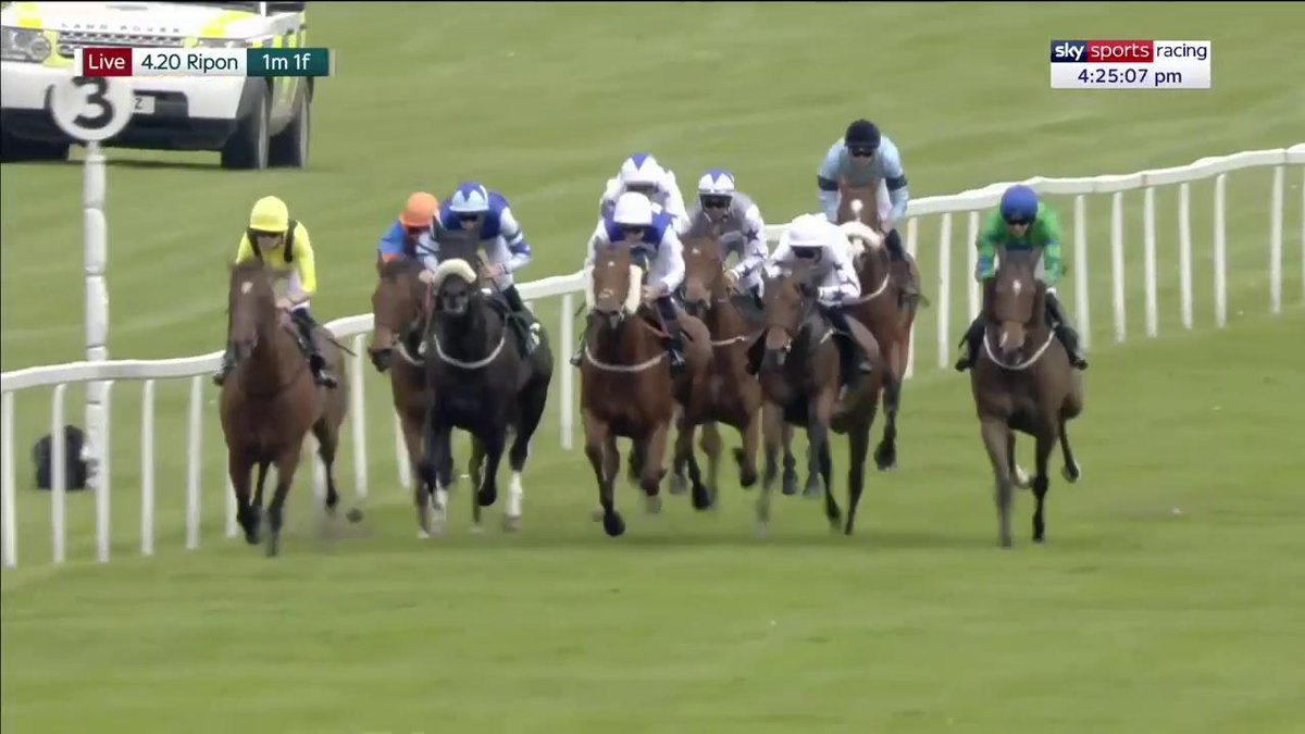 Decisive – Fayez wins the feature Wilmot-Smith Memorial Handicap at @RiponRaces for the in-form @omeararacing team and @shanefifigray…