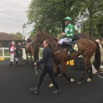 Double @RiponRaces today!! Fairy fast won the 6F handicap under Danny Tudhope for the Blessingndisguise Partnership, followed by Fayez winning the Wilmot-Smith Memorial Handicap in impressive fashion for Northern Lads and Nawton Racing under @shanefifigray
