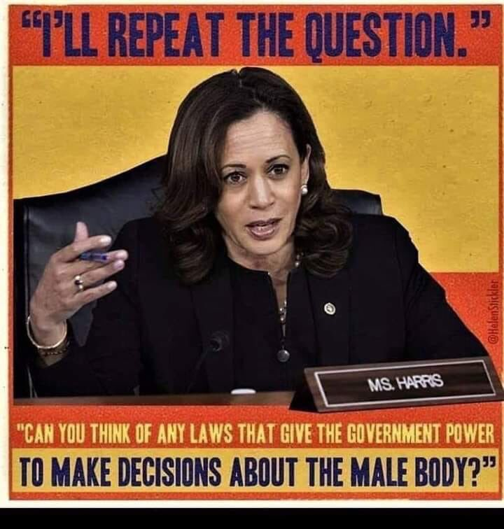 """I'll repeat the question."" ""Can you think of any laws that give the government to power to make decisions about male bodies?"""