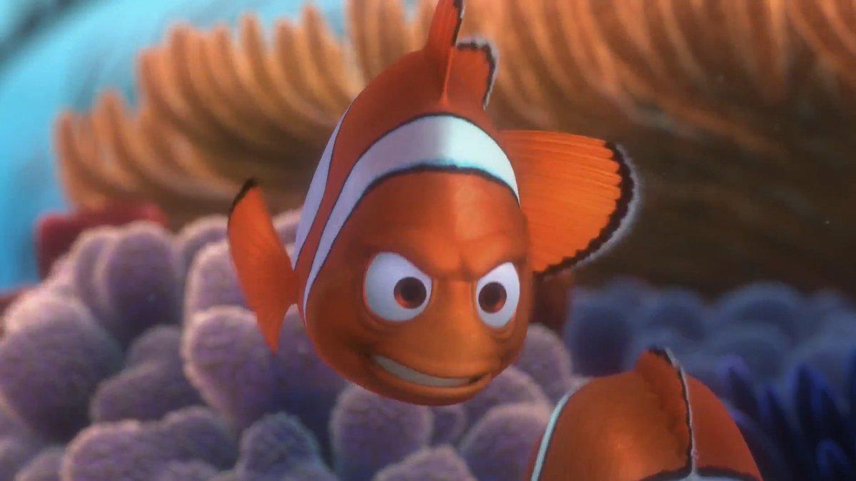 te crees capaz de estudiar todo el finde pero no es así Nemo