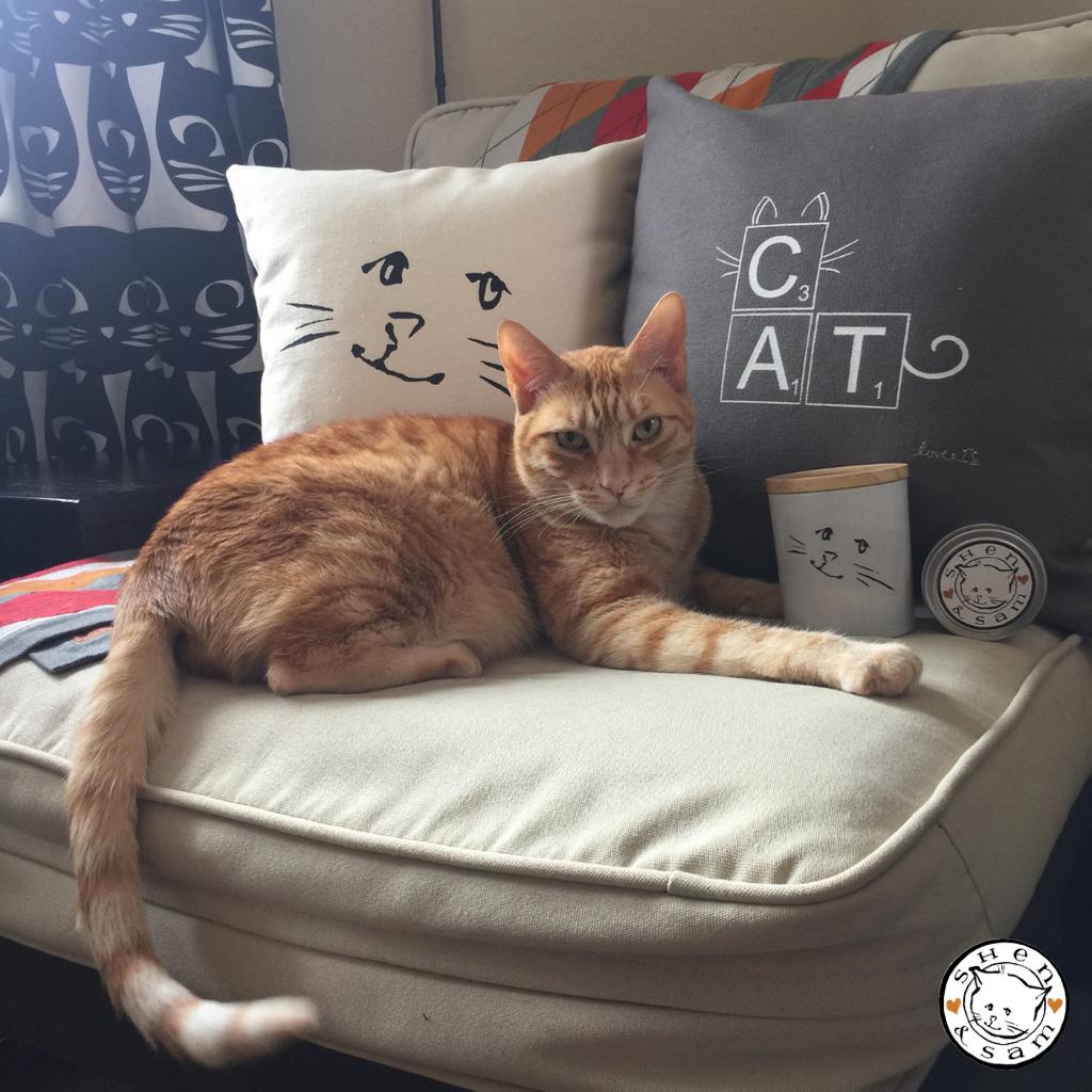 @shenandsamco has just the adorable cat-related décor you need & will be returning to CatCon for the 4th year! Their all-natural coconut wax candles (a fan favorite) & all-new throw pillows create a relaxing environment to snuggle with your kitty. soo.nr/K2Ok