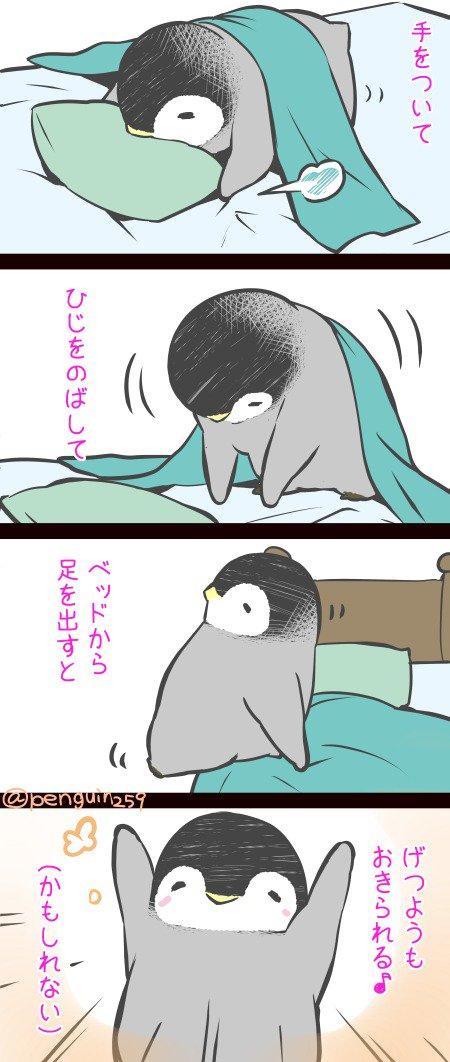 皇帝ペンギンのペンペン's photo on げつようび