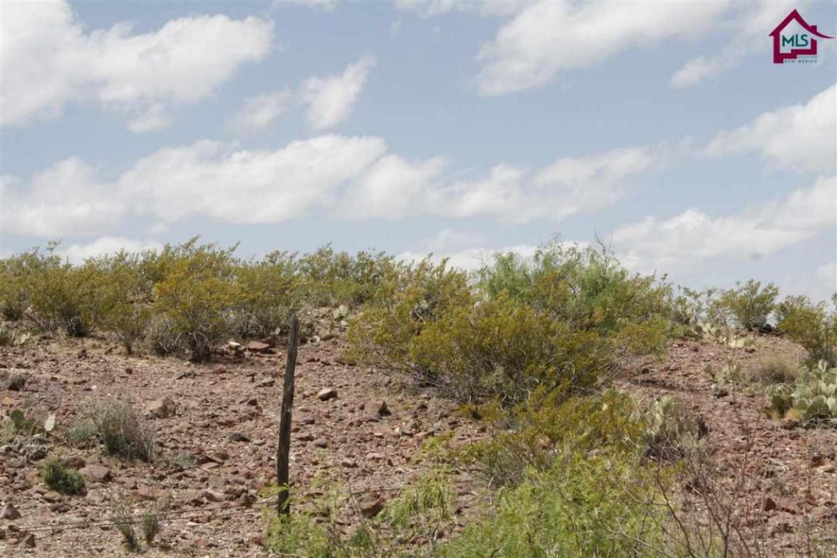 I would love to show you my #listing at 0000 Rincon Road #Rincon #NM  #realestate http://video.circlepix.com/9bd324b159140a79e18fb…