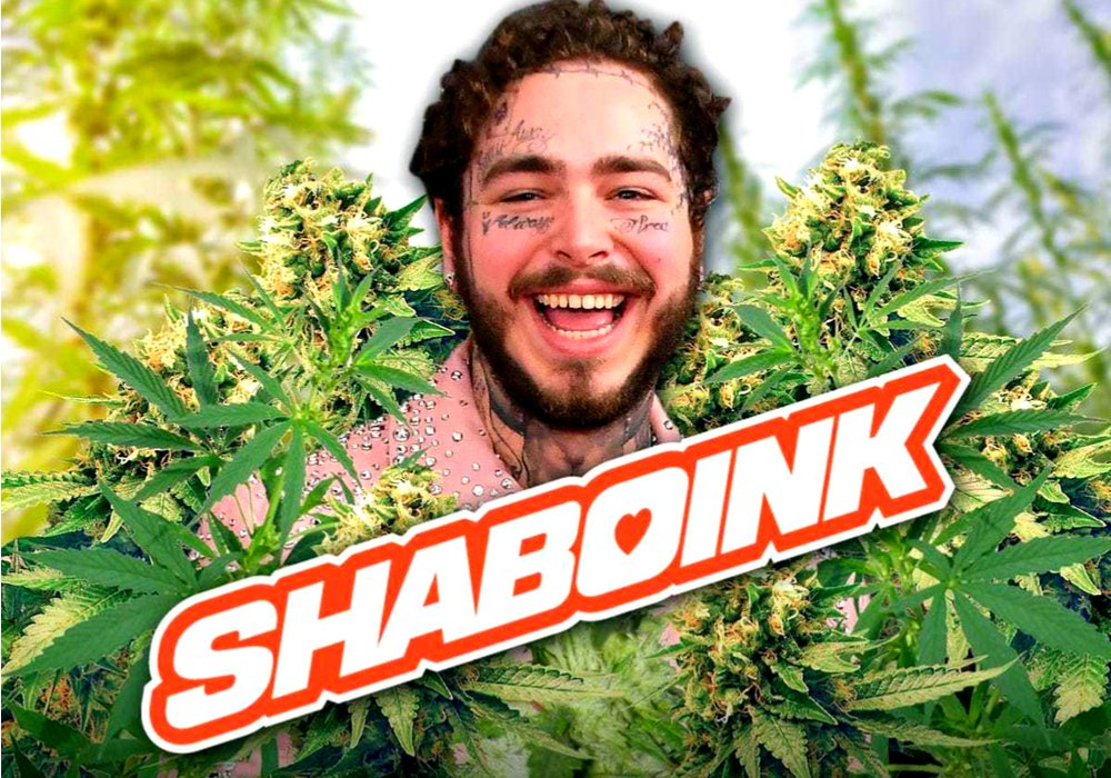 饶舌歌手 POST MALONE 即将创立个人大麻公司 SHABOINK