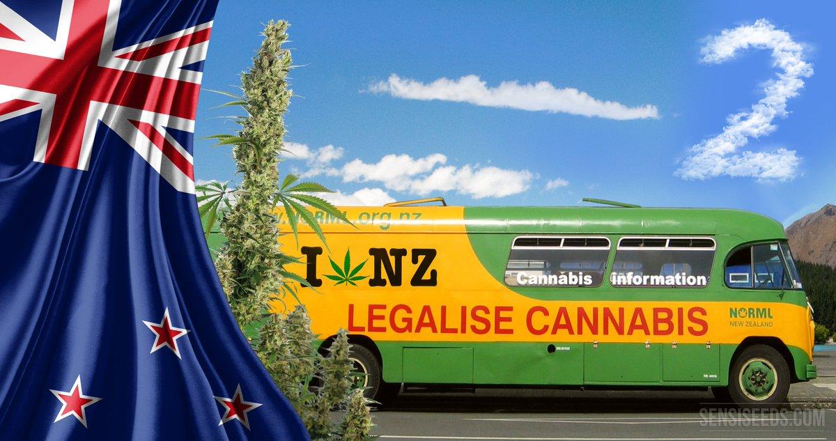 新西兰政府公佈大麻公投详情:明年开投,20岁以下禁止购买