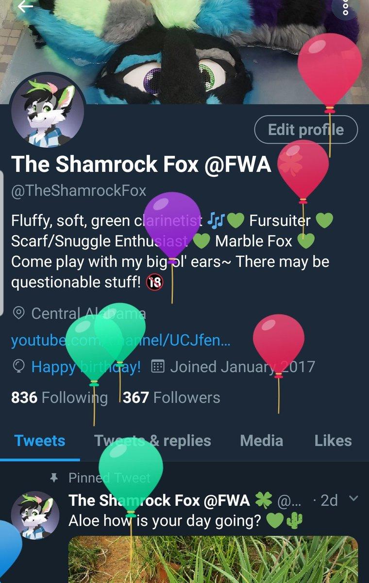 The Shamrock Fox 🍀 on Twitter: