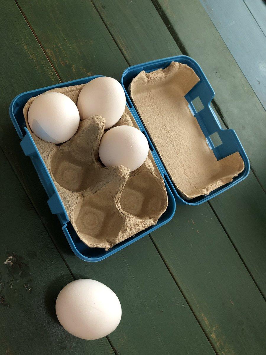 test ツイッターメディア - 俺の携帯卵入れΩ(オメガ) どうも閉まりにくかったのでインナーを上下で分けて両面テープで引っ付けました!  開閉しやすくなったよb #セリア #携帯卵入れ #DIY https://t.co/j0NZsb4w0j