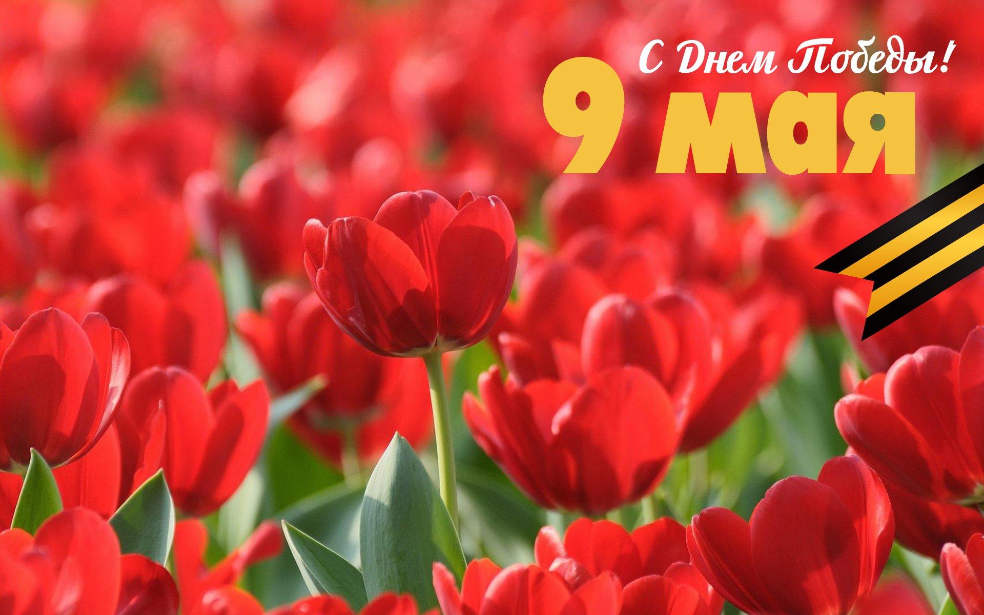 значение ячейке тюльпаны на день победы открытки фото изготовление дроби переливкой