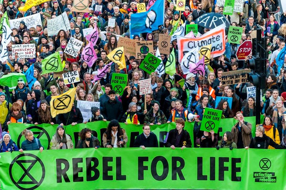 Extinction Rebellion 🐝⌛️🦋 on Twitter: