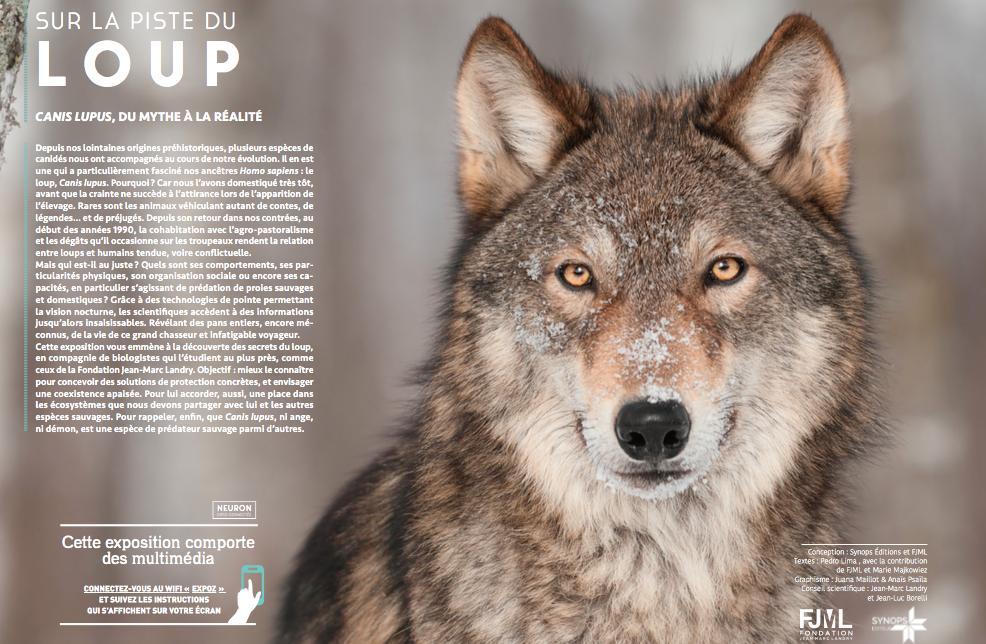 Notre dernière exposition multimédia est consacrée à Canis lupus : Sur la piste du loup, au-delà des idées reçues et pour une cohabitation apaisée. http://www.synops-editions.fr/Expo_Loup.html