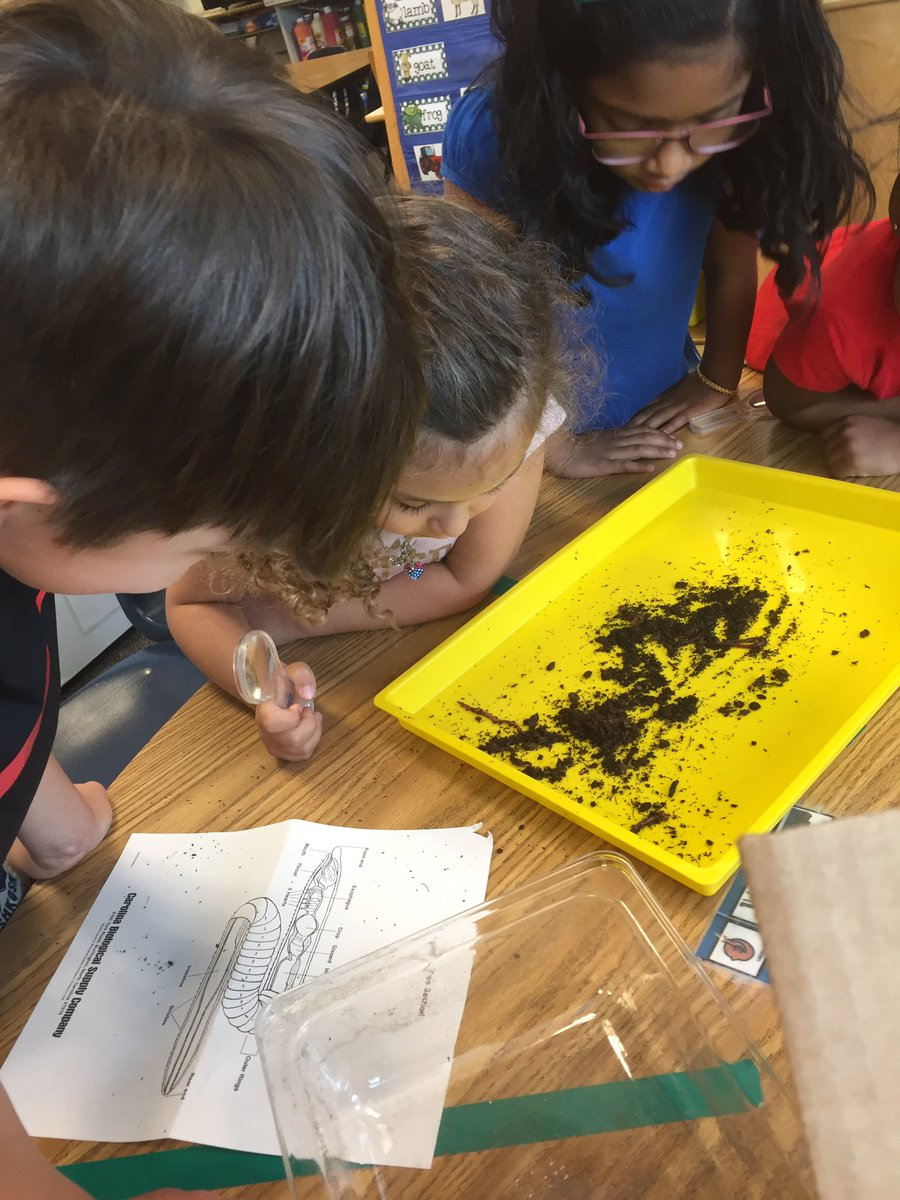 So worms have black and red stripes? Using our observation skills <a target='_blank' href='http://search.twitter.com/search?q=APSisAwesome'><a target='_blank' href='https://twitter.com/hashtag/APSisAwesome?src=hash'>#APSisAwesome</a></a> <a target='_blank' href='http://search.twitter.com/search?q=HFBTweets'><a target='_blank' href='https://twitter.com/hashtag/HFBTweets?src=hash'>#HFBTweets</a></a> <a target='_blank' href='https://t.co/rpJpSruCMY'>https://t.co/rpJpSruCMY</a>
