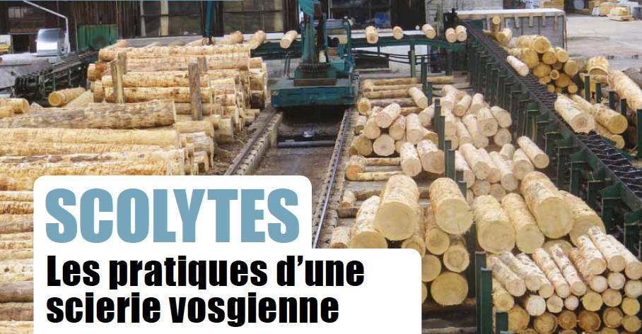 [REPORTAGE] La #scierie vosgienne Jean-Mathieu achète depuis plusieurs mois des « #bois scolytés » avec une décote de 15 %. Elle parvient à tirer des produits d'emballage dans les parties bleuies. A lire dans le Forêts de France du mois de mai.  https://urlz.fr/9HiN