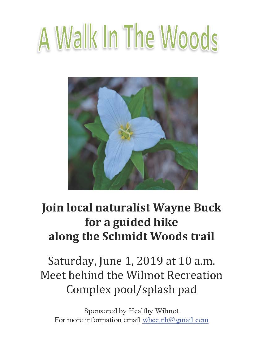 Poster for Nith Valley Ecoboosters A Walk In The Woods