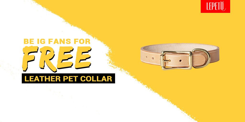 It's GIVEAWAY time! Win a $42.99 leather pet collar for your furry friend! Please enter our IG GIVEAWAY to winhttp://bit.ly/petcollar-ig   #GiveawayAlert #Giveaways #PeteForAmerica #lepeto #lepetofans #lepetogreatdeals  #CatAndDog #dogs #puppy #doglove #doglovers #catlovers #catpic.twitter.com/dd80nt0O32  by lepeto.official