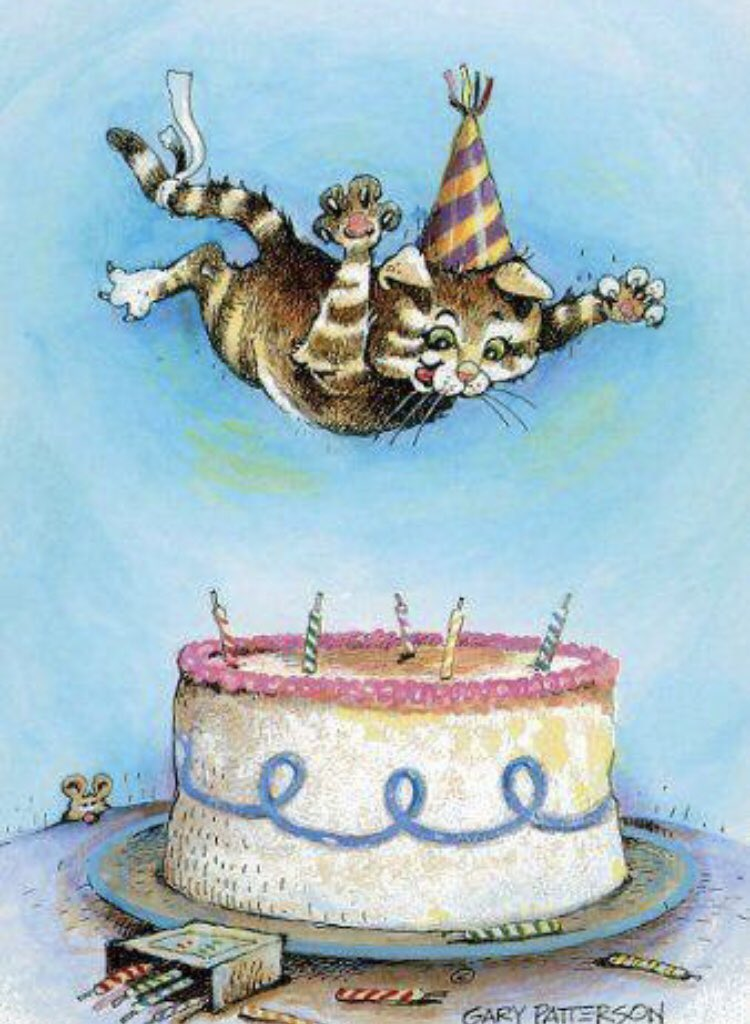 Надписью молодцы, открытки днем рождения кошки