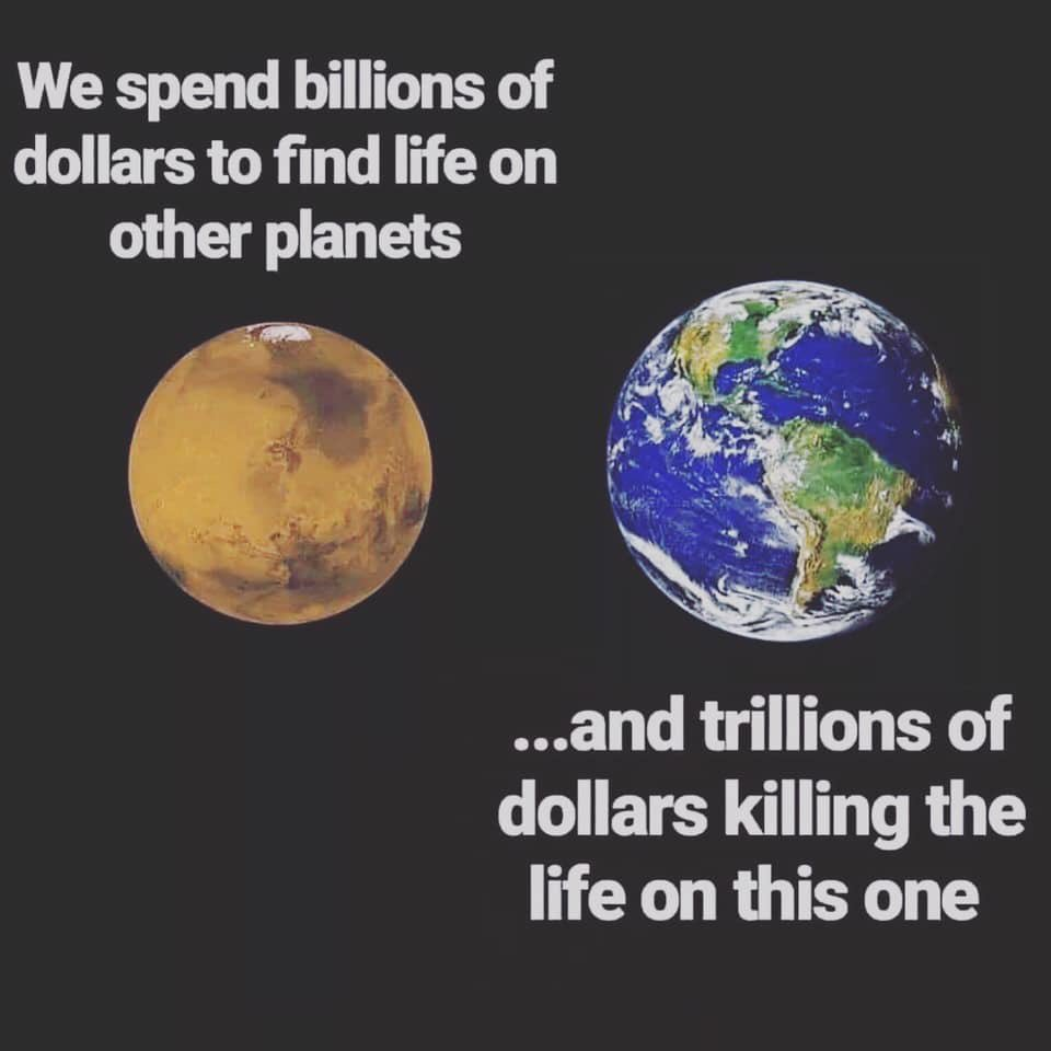 Because humans suck