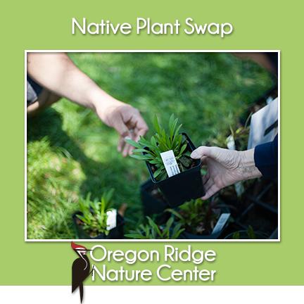 Native Plant Swap! Saturday, May 11; 1 - 3 p.m. The Lake Pavilion at Oregon Ridge Nature Center #NativePlant #FREE