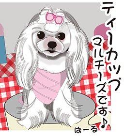 ぱーるちゃんです~(#^.^#) #犬 #ペット #マルチーズ #仕事 #転職 #募集 #イラスト #イラスト依頼
