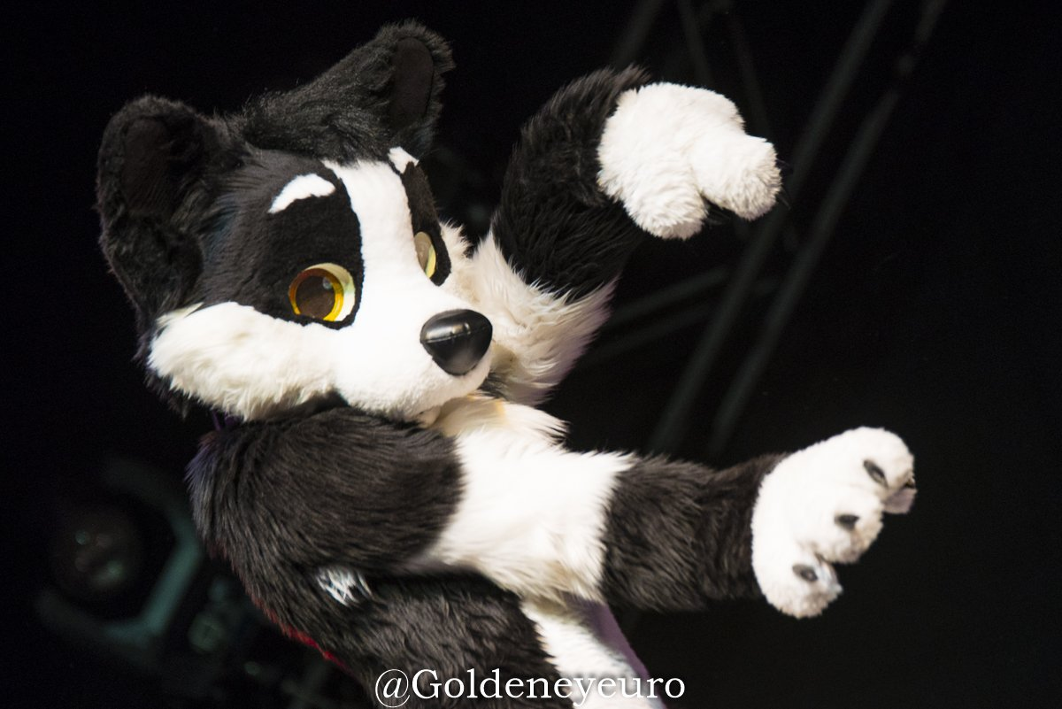 Wolvinny's photo on #FursuitFriday