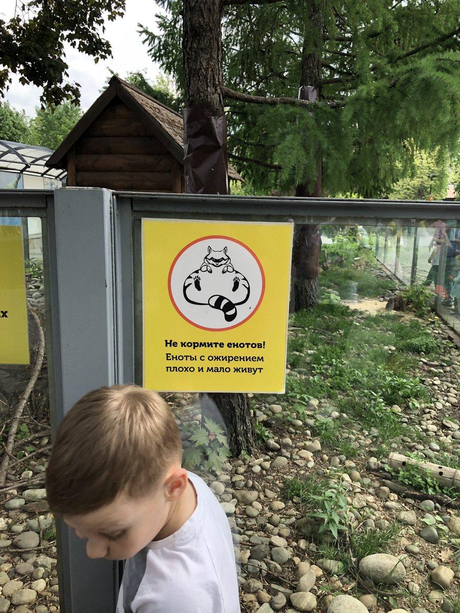 Не кормите картинки