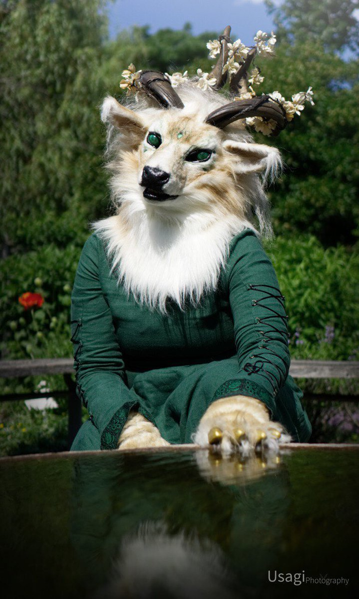 Wolftale🌻's photo on #FursuitFriday