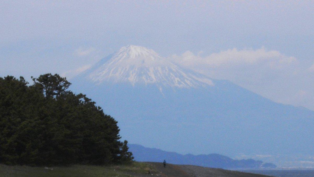 京都でのクラス会の帰路、60年前関西から就職上京して以来の懸案だった三保の松原からの富士山を初めて眺めてきた。多少霞んではいたが、富士山の全貌が見えたのは幸いであった。