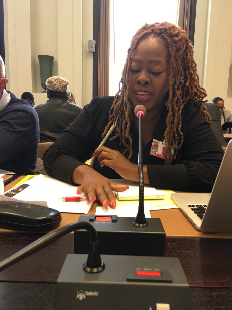 .@MsLaToshaBrown presenting at the @UN on behalf of the @USHRN and @BlackVotersMtr around the proposal of the United Nations to establish a  Permanent Forum of People of African Descent. #africandescent #eliminateracism  <br>http://pic.twitter.com/Vj9KDtP0XG