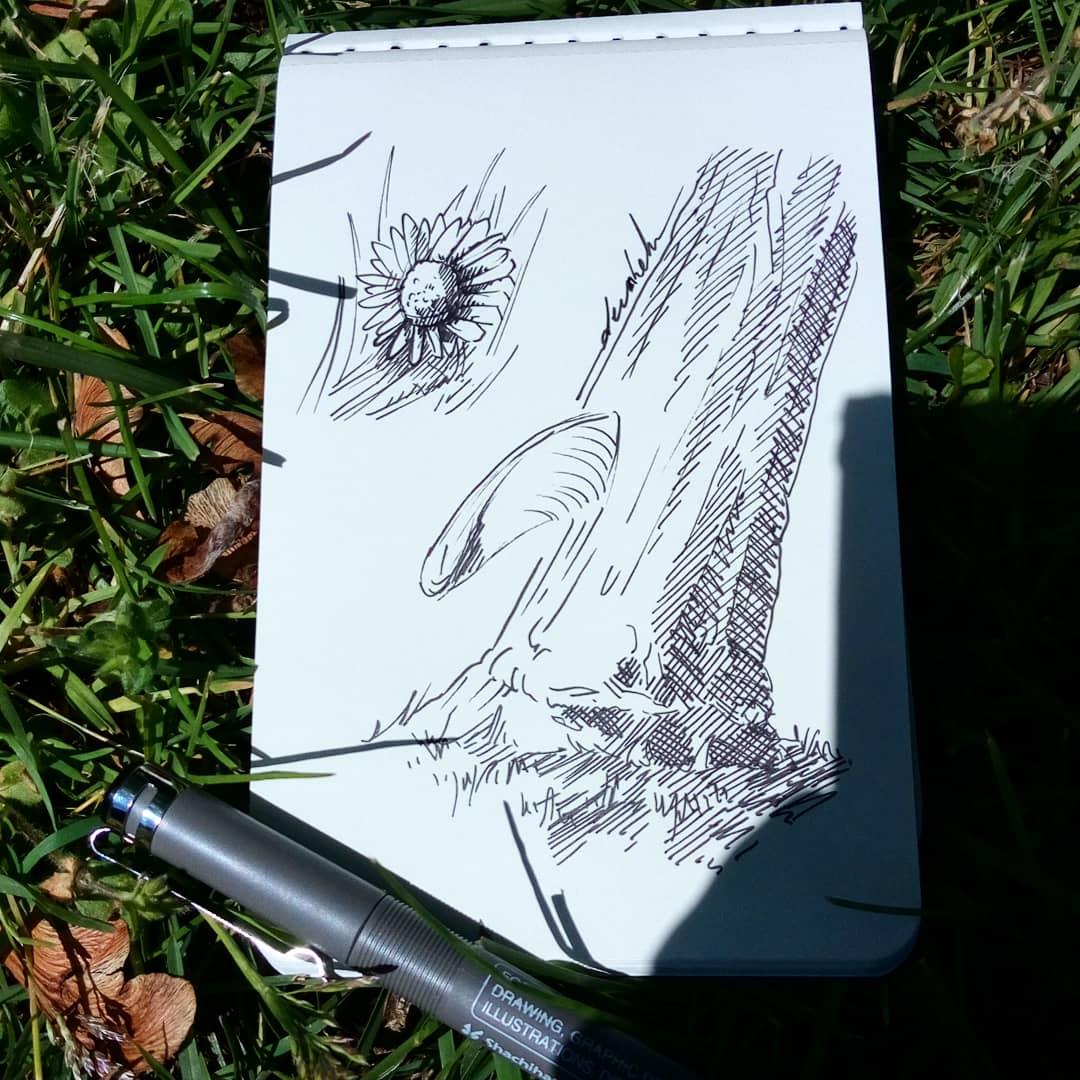 Drawing outside #dailyart #dailyillustration #trees #nature #flowers #drawingoutside https://t.co/AXkc2PwECA