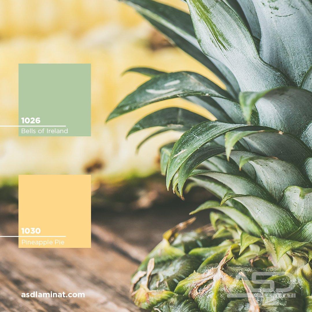 #BellsofIreland #1026 #PineapplePie #1030 #ASDLaminat