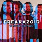 Image for the Tweet beginning: Just bought #Freakazoid by #SilversunPickups