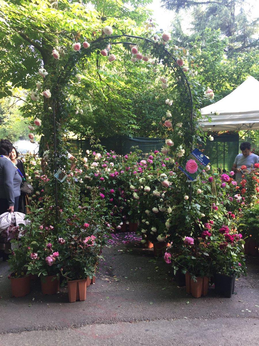 Chiara Civolani On Twitter Giardini E Terrazze Ai