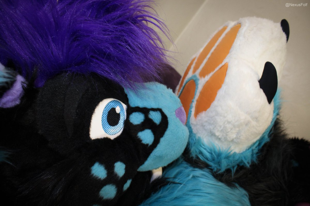 Gale Frostbane's photo on #FursuitFriday