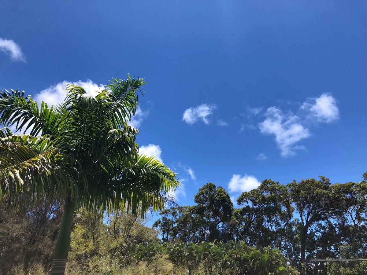 test Twitter Media - Beautiful warm and clear in haiku. #cmweather #Maui https://t.co/TMCZCc0vsg