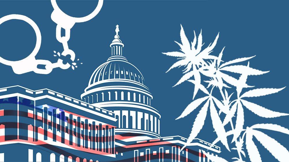 美国参众两院提案推大麻全国合法化