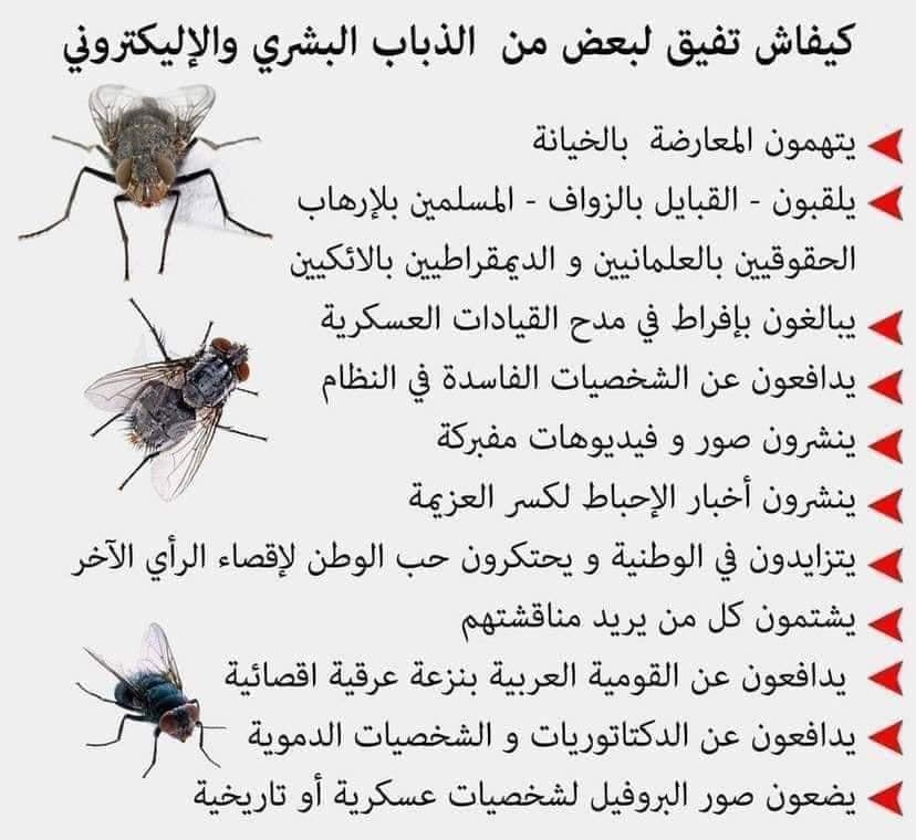 محمد العربي زيتوت At Mohamedzitout Twitter
