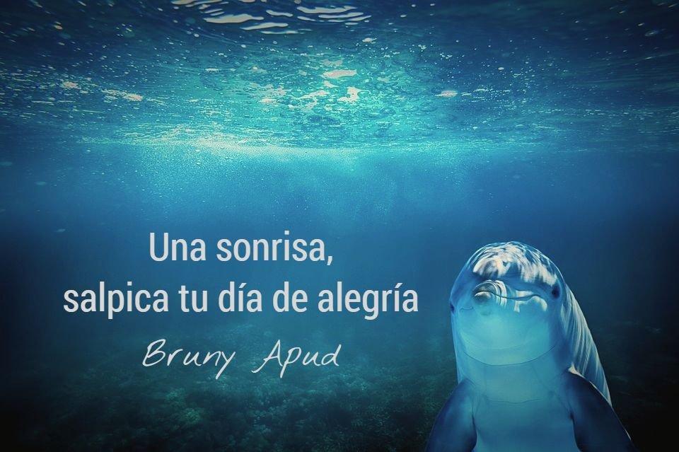 Frases Bruny Apud On Twitter Una Sonrisa Salpica Tu Día