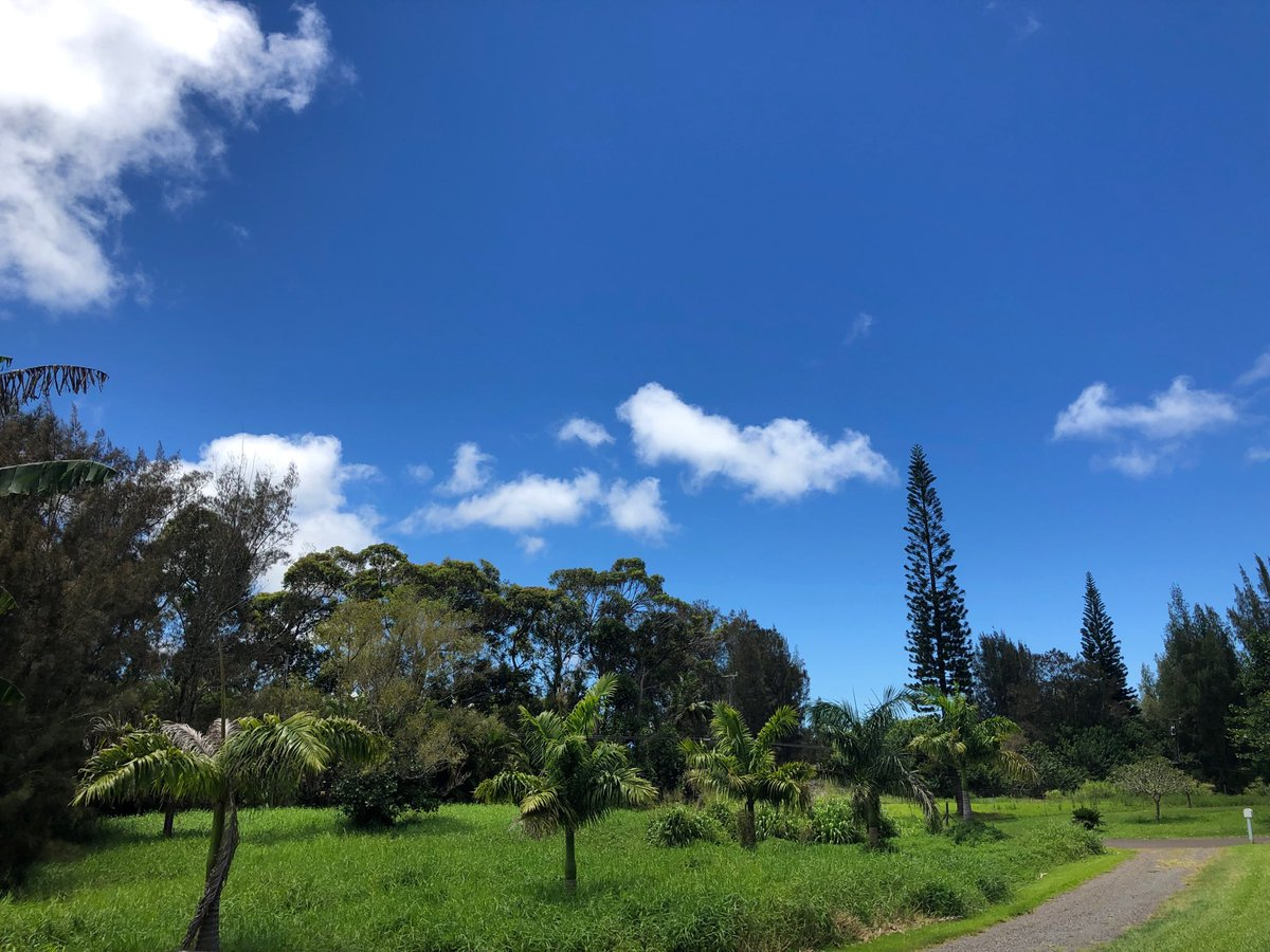 test Twitter Media - Warm and calm in Haiku. #cmweather #Maui https://t.co/5WgiNs5Ttw