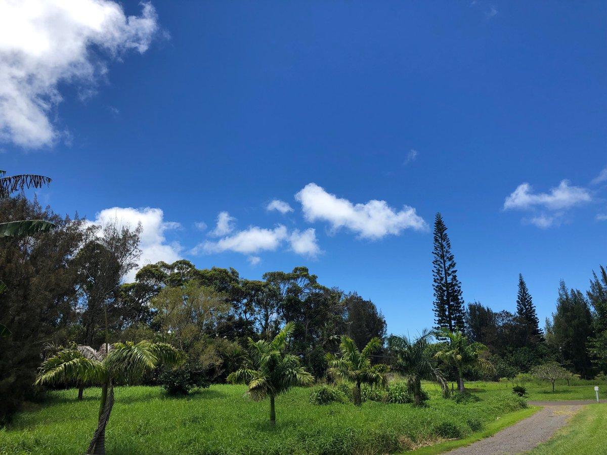 test Twitter Media - Warm and calm in Haiku. #cmweather #Maui https://t.co/5WgiNs5Ttw