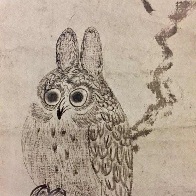 Tari_Tojimbaraの画像