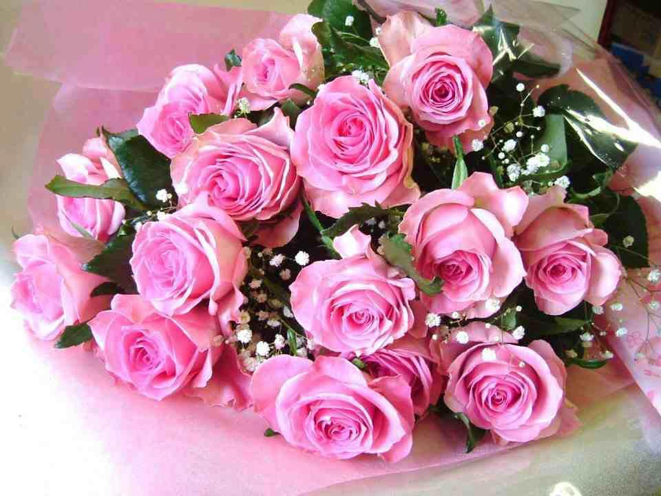 Открытка розы 55 лет женщине, для анимации