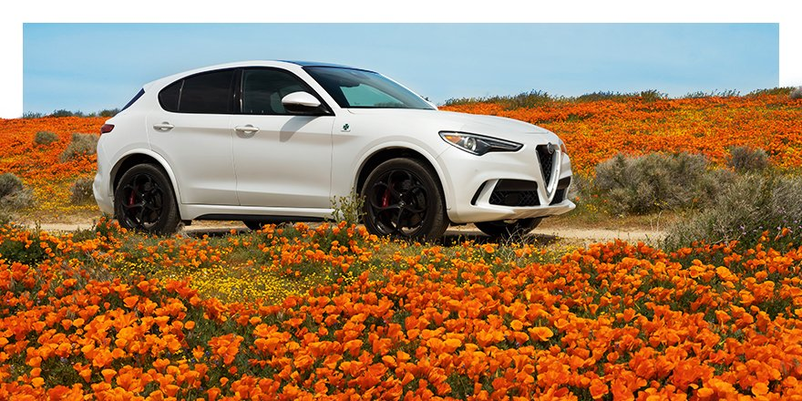 Why buy her a bouquet when you can take her to the whole field? Give the gift of adventure. #HappyMothersDay