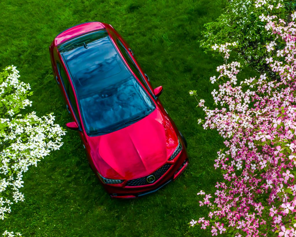 Why buy mom flowers when you can take her to them? Happy #MothersDay! #TLX