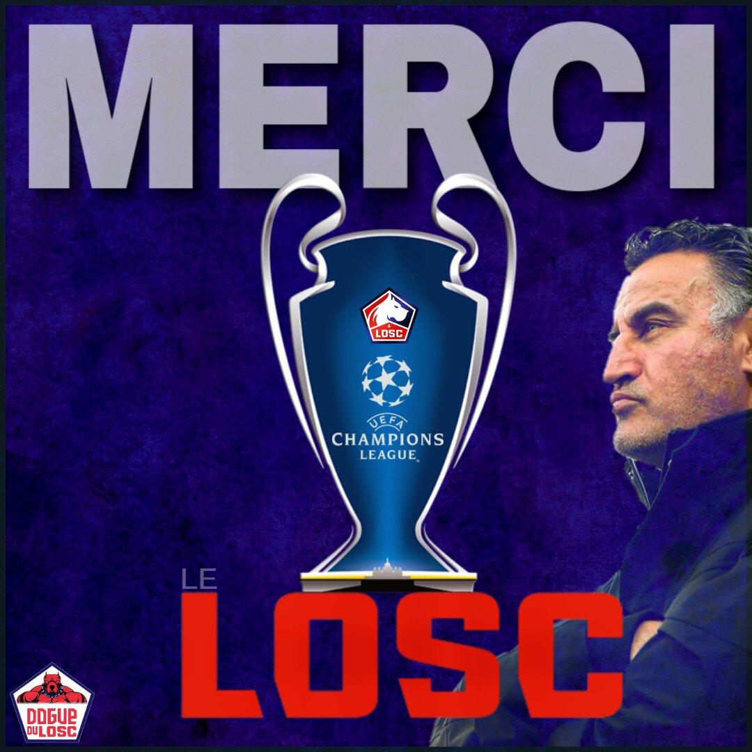 DOGUE DU LOSC 🌟's photo on Le LOSC