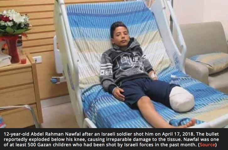KAKAPO➤Endangered's photo on #Gaza