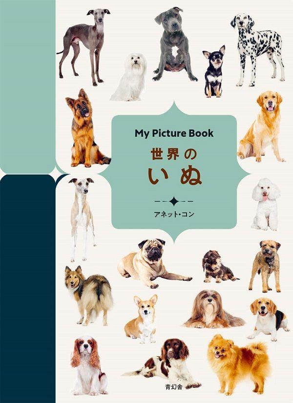 5月13日は、「愛犬の日🐶」全ページ型抜き加工(!)の、目に楽しいMy Picture Bookシリーズ。今日ご紹介するのはもちろん、犬の図鑑です。アネット・コンさん『My Picture Book 世界のいぬ』。本シリーズはうつくしいデザインが魅力的。ぜひチェックしてみてくださいね。▼