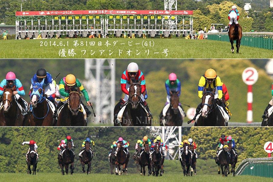今週は第86回東京優駿(日本ダービー)が行われますね。 2012年ディープブリランテから2017年レイデオロまでの6度行きましたが、すべて直線の正面撮影でした。正面からの撮影はほんま難しい。(最近使用していないけど)ラジオと騎手のリアクションが頼みなのです。 #日本ダービー #東京優駿 #競馬
