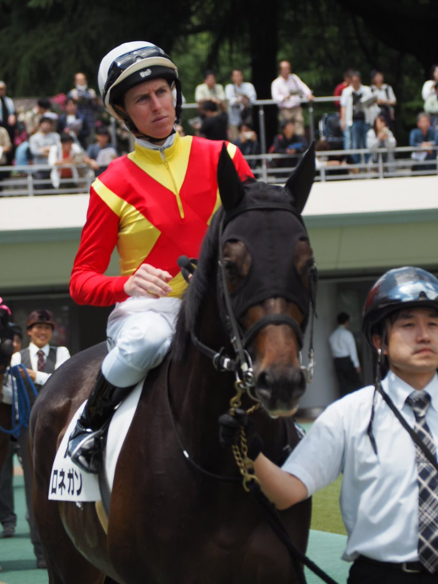 昨日のダミアン!ロネガン! #ダミアン・レーン #ロネガン #東京競馬場