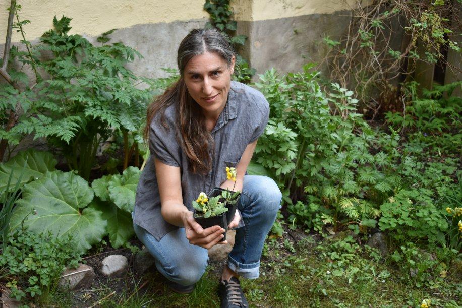 Privata trädgårdar utgör upp till en tredjedel av våra städers och tätorters yta. Anna Persson @Lundsuni tipsar om fem enkla saker du kan göra på din täppa för att bidra till biologisk mångfald apropå Biologiska mångfaldens dag 22 maj.   https://bit.ly/2JS6AY7