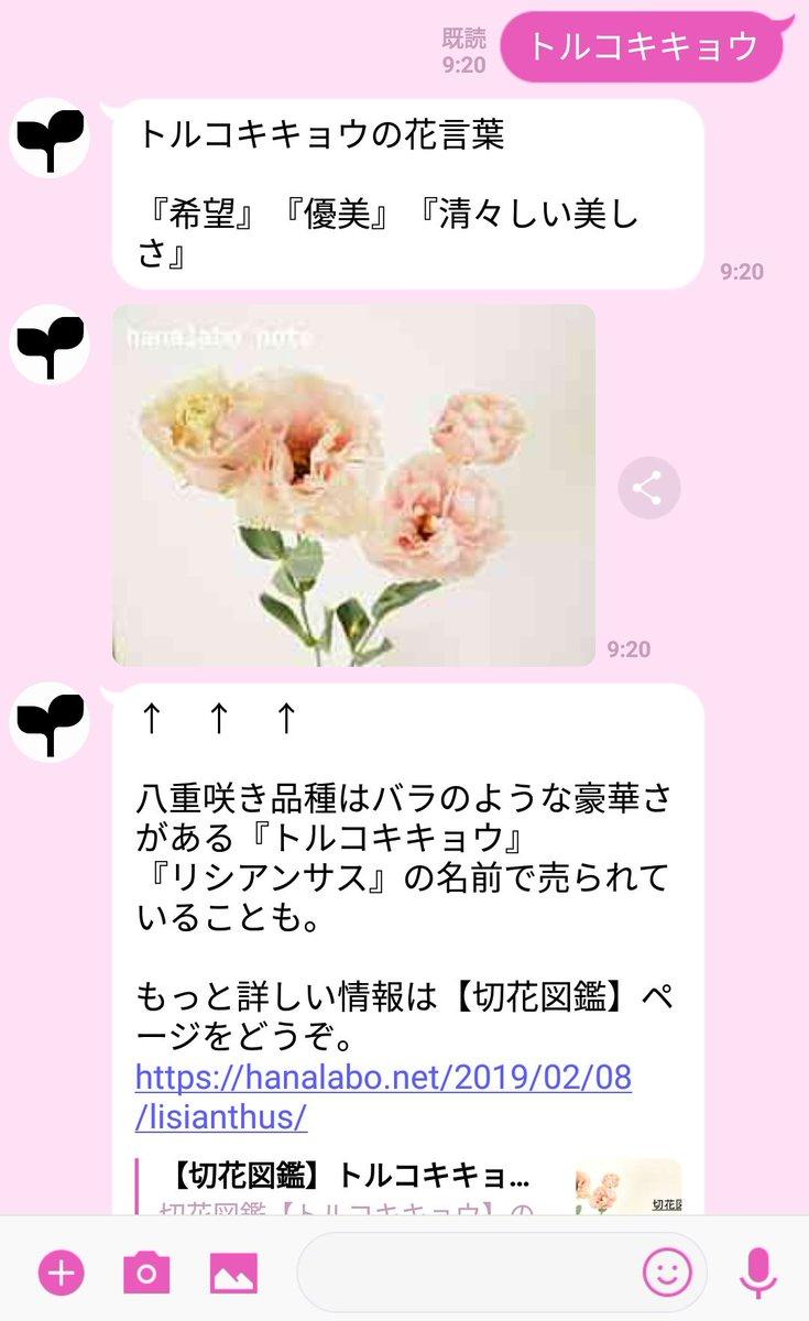花言葉を調べられるLINE@ですが、花名だけを入力しても花言葉が返ってくるように、現在修正中です。  使いやすく改良していきますので、しばしお待ちください💦  こんな感じになる予定…!✨  ↓
