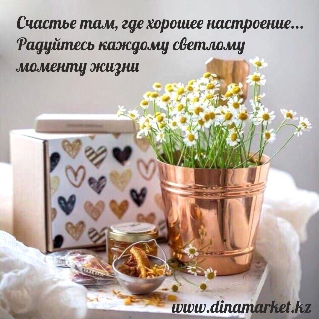 хамидие картинки цветы с цитатами хорошего настроения видео, отзывы туристов